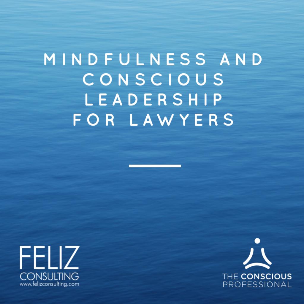 Mindfulness & Conscious Leadership for Lawyers