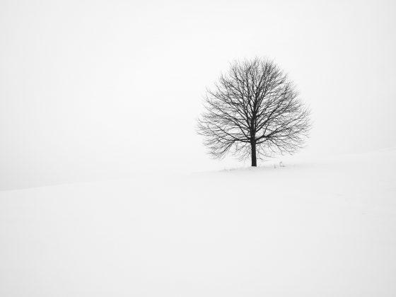 Mindfulness Positivity Winter 2020